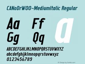 CANoDr-MediumItalic