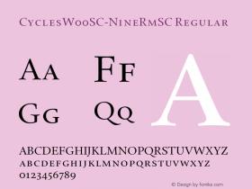 CyclesSC-NineRmSC