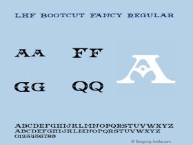 LHF Bootcut Fancy