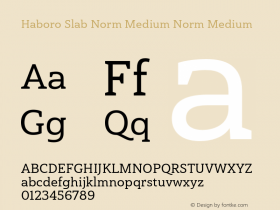 Haboro Slab Norm Medium