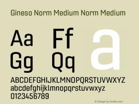 Gineso Norm Medium