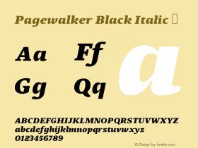 Pagewalker Black Italic