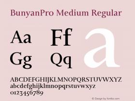 BunyanPro Medium