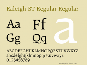 Raleigh BT Regular