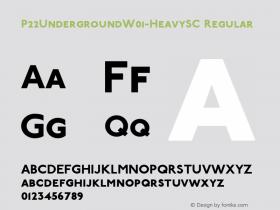 P22Underground-HeavySC