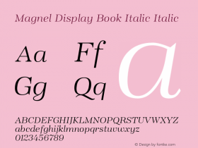 Magnel Display Book Italic