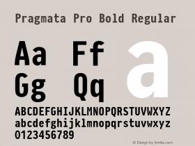 Pragmata Pro Bold