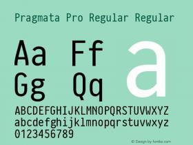 Pragmata Pro Regular