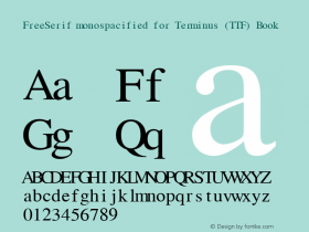 FreeSerif monospacified for Terminus (TTF)