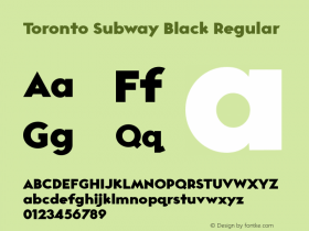 Toronto Subway Black