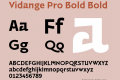 Vidange Pro Bold