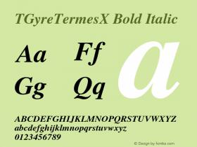 TGyreTermesX