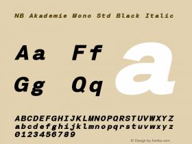 NB Akademie Mono Std Black