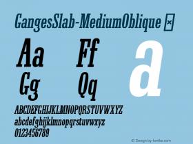GangesSlab-MediumOblique