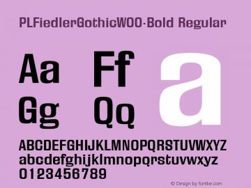 PLFiedlerGothic-Bold