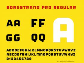 Borgstrand Pro