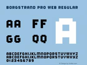 Borgstrand Pro Web