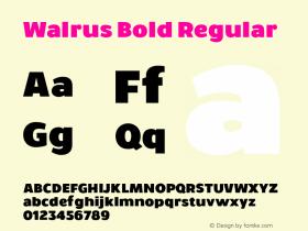 Walrus Bold