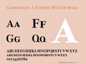 Corporate A Expert BQ Exp