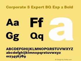 Corporate S Expert BQ Exp 2