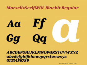 MarselisSerif-BlackIt