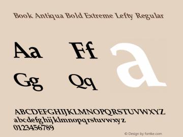 Book Antiqua Bold Extreme Lefty