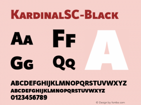 KardinalSC-Black