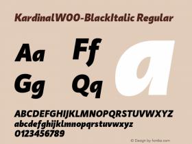 Kardinal-BlackItalic