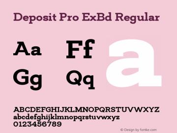 Deposit Pro ExBd