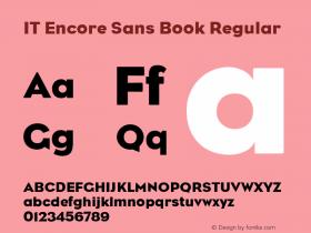 IT Encore Sans Book