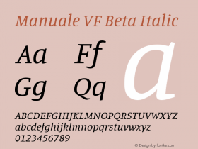 Manuale VF