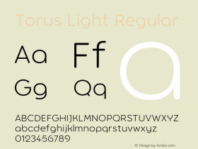 Torus Light
