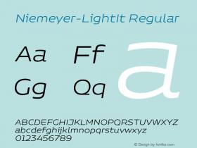 Niemeyer-LightIt