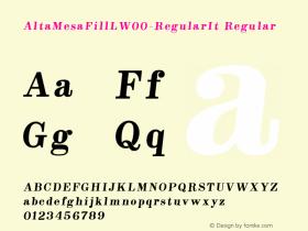 AltaMesaFillL-RegularIt
