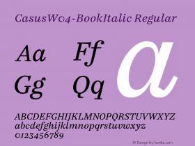 Casus-BookItalic
