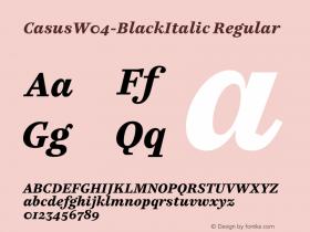 Casus-BlackItalic