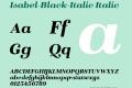 Isabel-Black-Italic