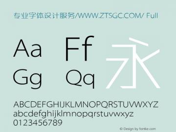 专业字体设计服务/WWW.ZTSGC.COM/