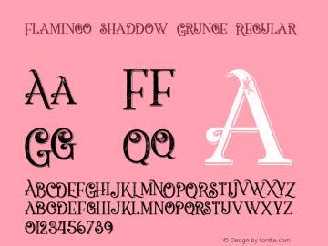 Flamingo shaddow Grunge