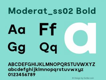 Moderat_ss02