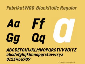 FabrikatW00-BlackItalic