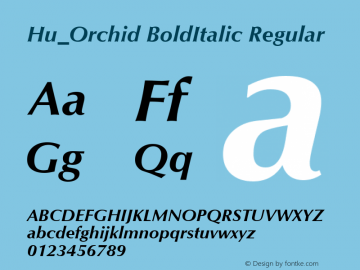 Hu_Orchid BoldItalic