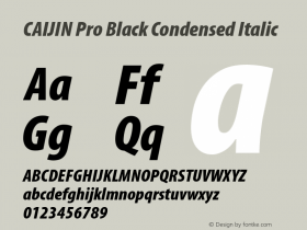 CAIJIN Pro