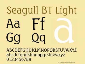 Seagull BT
