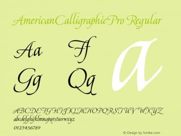 AmericanCalligraphicPro