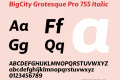 BigCity Grotesque Pro 755