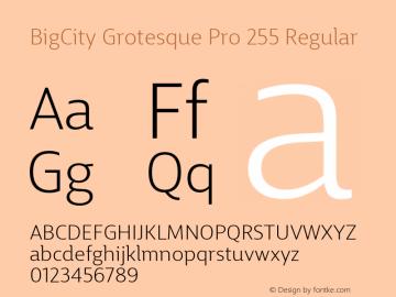 BigCity Grotesque Pro 255