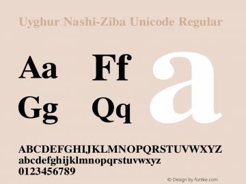 Uyghur Nashi-Ziba Unicode