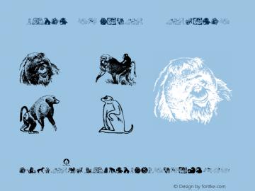 Animal-ArtHouse40