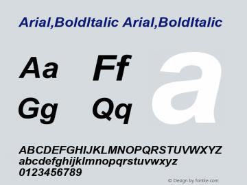 Arial,BoldItalic